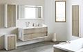 Salle de bain Icone